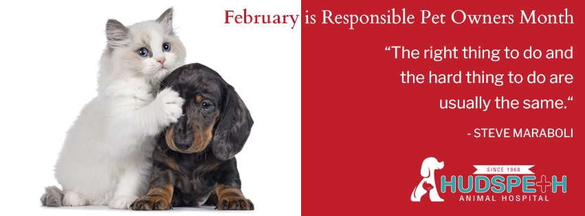 February is Responsible Pet Owners Month