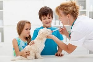 vaccination-300x200